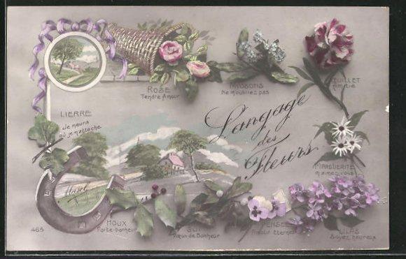 AK Blumensprache, Rose Tendre Amour, Houx Porte-bonheur, Pensee Amour Eternel