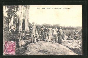 AK Colombo, Groupe de cingalais