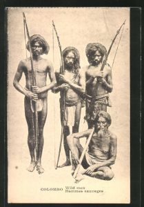 AK Colombo, Wild men, Hommes sauvages