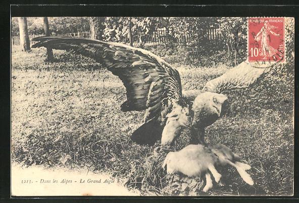 AK Adler mit seiner erlegten Beute 0