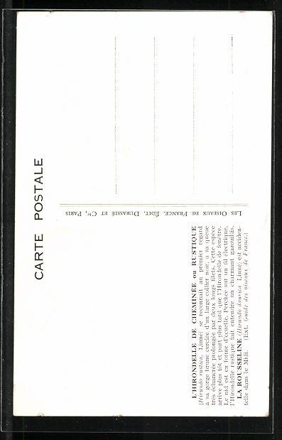 Künstler-AK Schwalben auf einem Draht sitzend 1