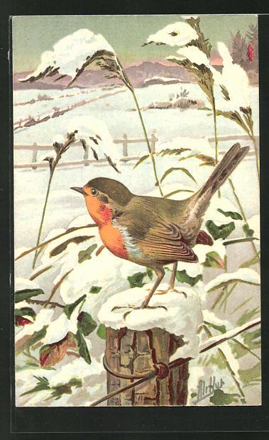 Künstler-AK Ein Rotkehlchen in winterlicher Landschaft