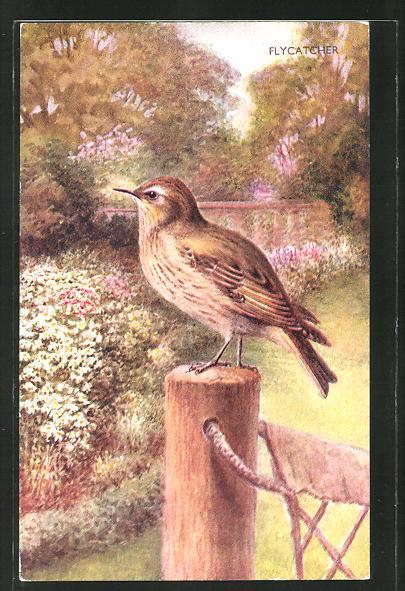 Künstler-AK Ein Tyrann-Vogel auf einem Pfeiler
