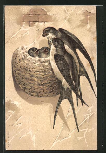 Künstler-AK Schwalben an ihrem Nest