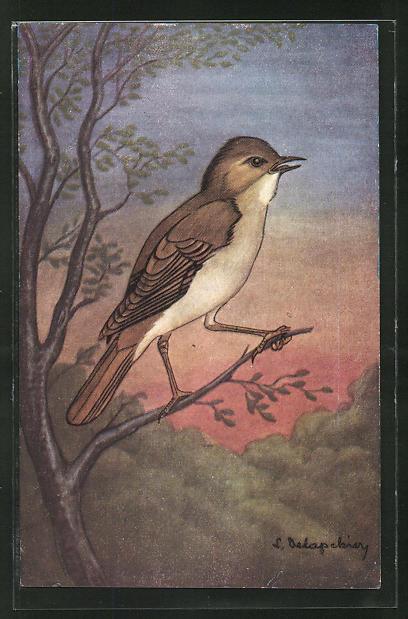 AK Le Rossignol, Nachtigall auf einem Zweig