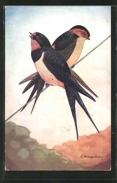 AK L'Hirondelle de Cheminee ou Rustique, 2 Vögel 0