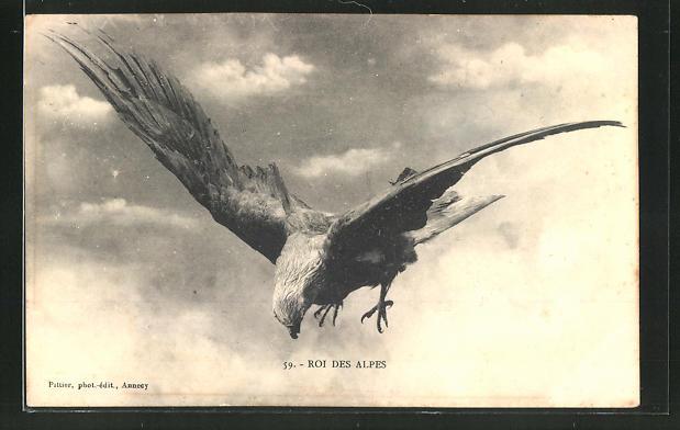 AK Roi des Alpes, Adler in der Luft 0