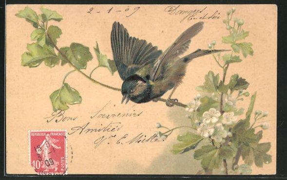 Präge-AK Vogel auf einem Zweig mit Blüten