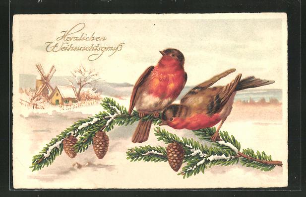 Präge-AK 2 Vögel auf einem Tannenzweig im Winter 0
