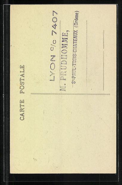 AK St. Paul-Trois Chateaux, L' Orgue, Orgel 1