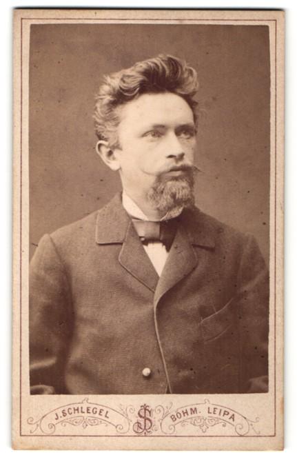Fotografie J. Schlegel, Böhm. Leipa, Portrait hübscher junger Mann mit Bart und Fliege im Jackett
