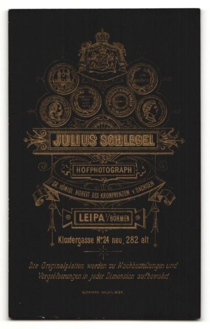 Fotografie J. Schlegel, Leipa, Portrait charmanter betagter Herr mit Vollbart in grauer Jacke 1