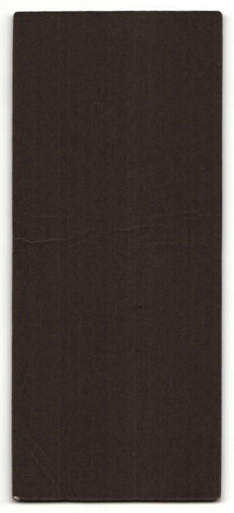 Fotografie Ernst Rudolph, Hof i. B., dunkelhaariges Fräulein mit Haarschmuck im weissen prachtvollem Kleid 1