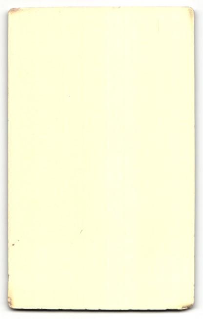 Fotografie G. Stangler, C. Trebová, Portrait Dame mit zeitgenöss. Frisur 1