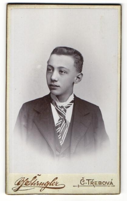 Fotografie G. Stangler, C. Trebová, Portrait halbwüchsiger Knabe mit Bürstenhaarschnitt