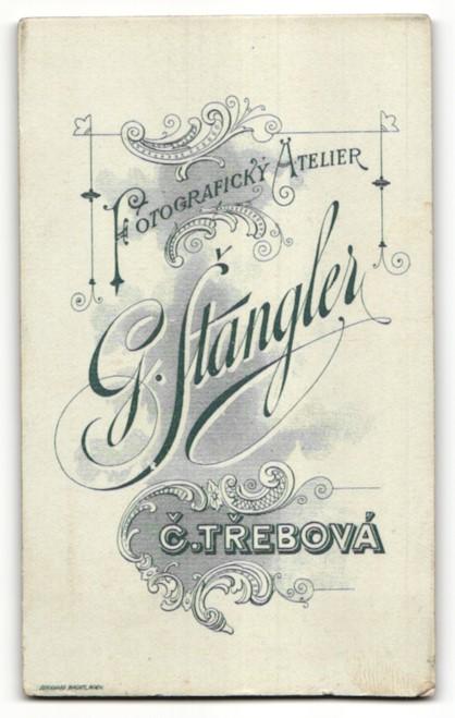 Fotografie G. Stangler, C. Trebová, Portrait halbwüchsiger Knabe mit Bürstenhaarschnitt 1