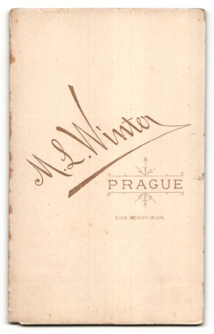 Fotografie Winter, Prague, Portrait Herr in Anzug 1