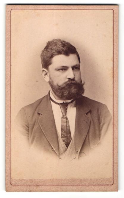 Fotografie Joh. Rechnitzer, Neusatz, Portrait Mann mit Vollbart 0