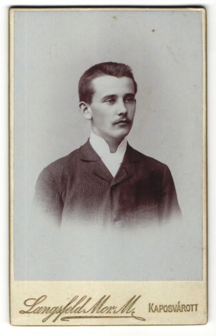 Fotografie Langsfeld Mor. M., Kaposvár, Portrait junger Herr in Anzug 0
