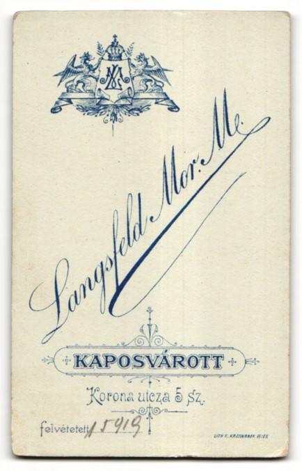 Fotografie Langsfeld Mor. M., Kaposvár, Portrait junger Herr in Anzug 1