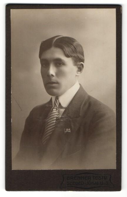 Fotografie Brenner Testv., Szeged, Portrait junger Herr mit zeitgenöss. Frisur 0