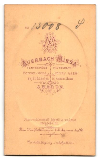 Fotografie Auerbach, Aradon, Portrait Herr mit Oberlippenbart 1