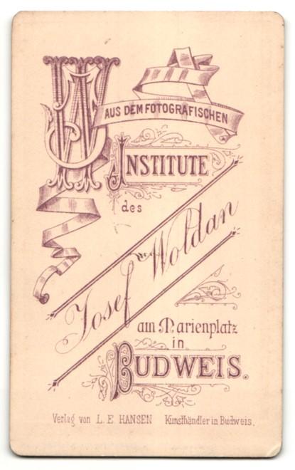 Fotografie Jos. Woldan, Budweis, Portrait Mädchen in Kleid 1