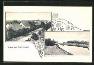 AK Spreenhagen, Häuser an einer Strasse, Kanal