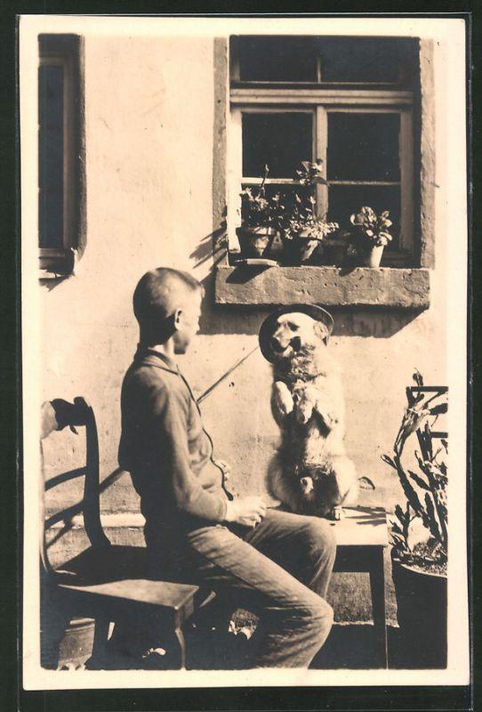 Fotografie dressierter Hund mit Hut & Pfeife vollführt Kunstück 0