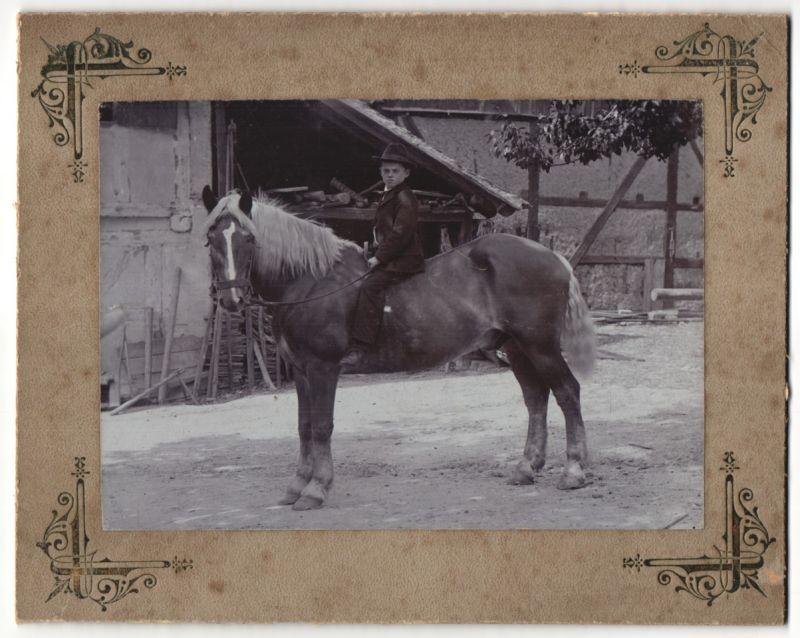 Fotografie H. Bachstein, Dresden, Knabe auf Pferd mit Zaumzeug sitzend