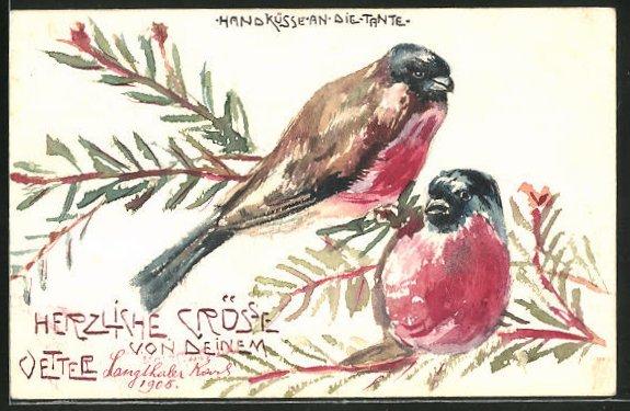 Künstler-AK Handgemalt: Vogelpaar auf einem Tannenzweig 0