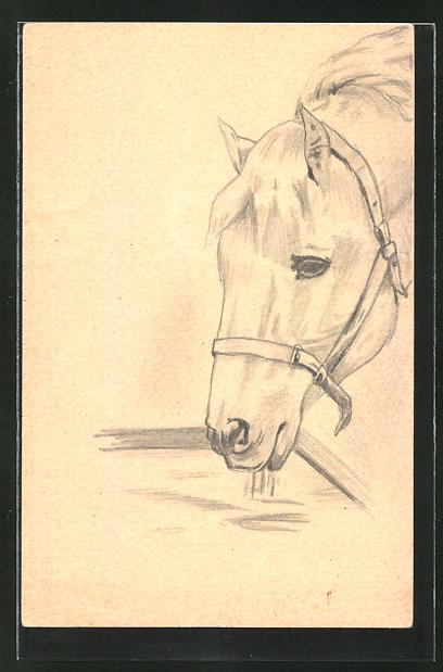 Künstler-AK Handgemalt: Pferd mit Zaumzeug an der Tränke 0