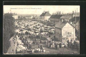 AK Saulieu, Camp de Foire ou Marche au Betail