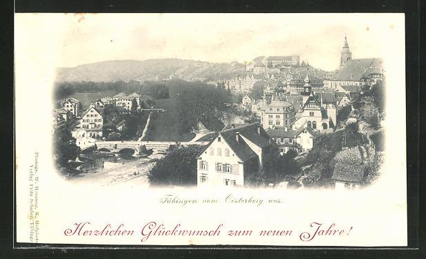 AK Tübingen, Gesamtansicht vom Oesterberg aus