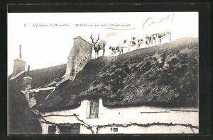 AK Gambaiseuil, Equipage de Bonneles, Hallali sur le toit, Hunde und Hirsch auf einem Dach