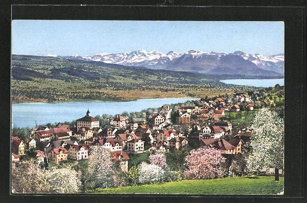 AK Beinwil am Hallwilersee, Totalansicht mit Alpen