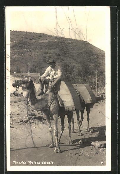 AK Tenerife, Typicos del pais, Bauer mit Kamelen
