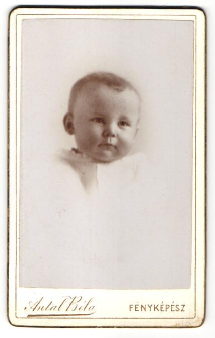Fotografie Antal Bela, Szekesfehervar, Portrait pausbäckiges Baby
