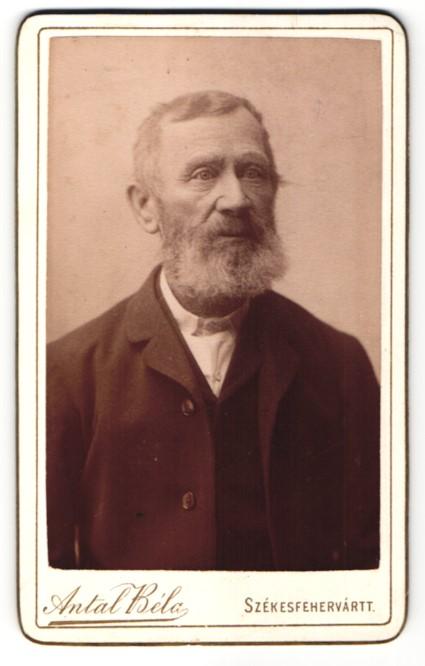 Fotografie Antal Bela, Szekesfehervar, Portrait alter Herr mit Vollbart