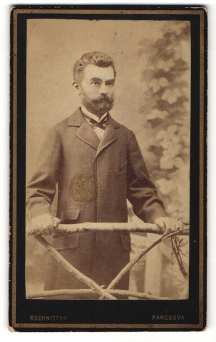 Fotografie Rechnitzer, Pancsova, Portrait eleganter Herr mit Vollbart und Querbinder