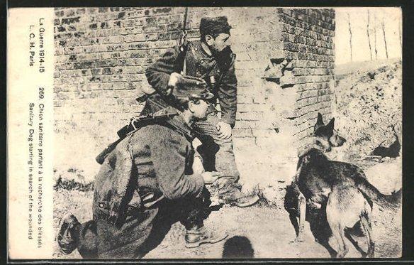 AK Soldaten mit Sanitätshund auf Beobachtungsposten