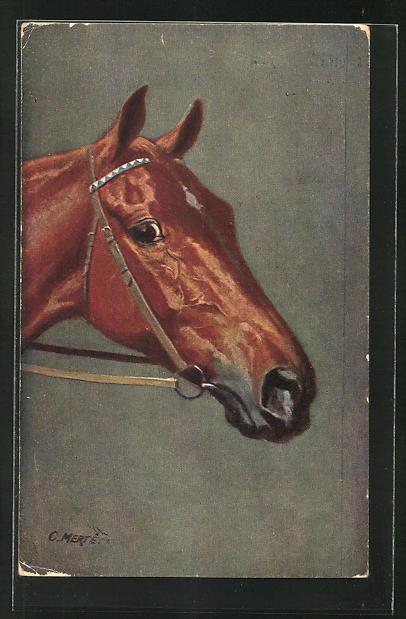 Künstler-AK O. Merte: Braunes Pferd mit Zaumzeug