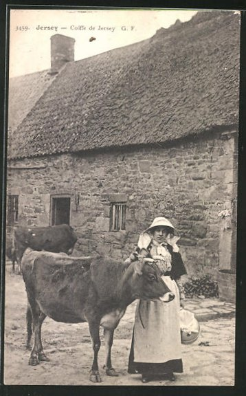 AK Jersey, Coiffe de Jersey, Frau mit Ochsen