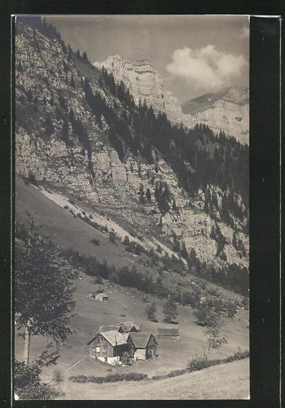 AK Negerdörfli, Ortspartie im Gebirge