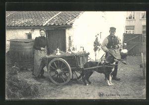 AK Laitiere Flamande, Hundegespann