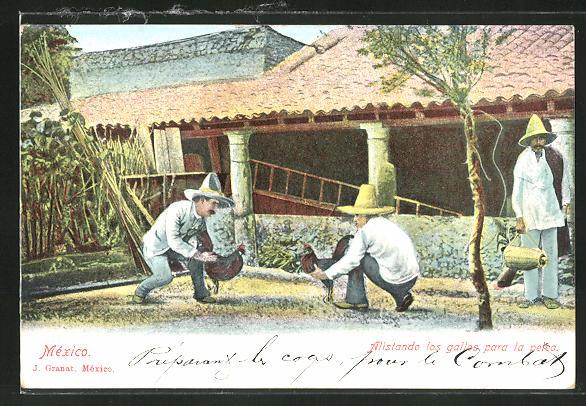AK Mexiko, Männer beim Hahnenkampf