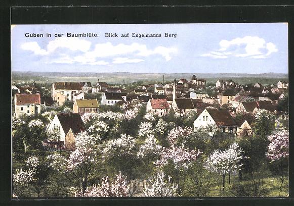 AK Guben, Ortsansicht in der Baumblüte mit Blick auf Engelmanns Berg