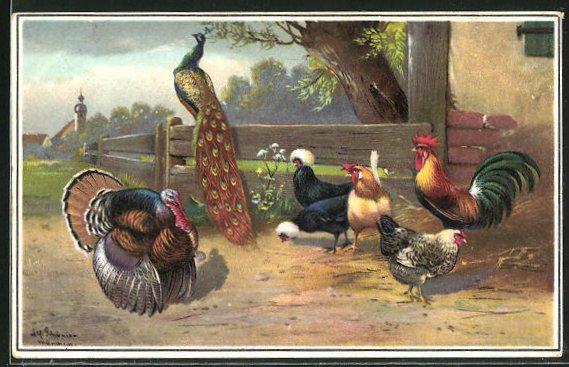Künstler-AK Alfred Schönian: Hennen mit Pfau und Auerhahn auf einem Bauernhof