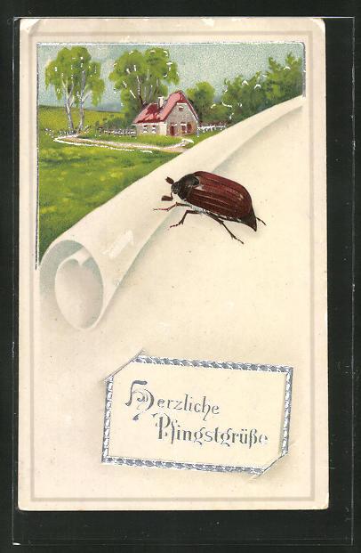 AK Maikäfer und Papier vor einem Haus, Pfingstgruss