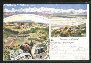 AK Leubringen-Evilard, Ortsansichten, Alpenpanorama